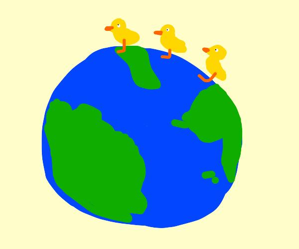 Global duck transport