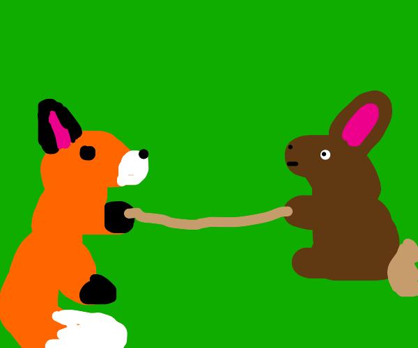 Fox and Rabbit Tug of War