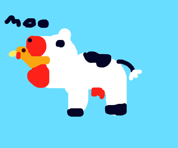 Cow eating chicken