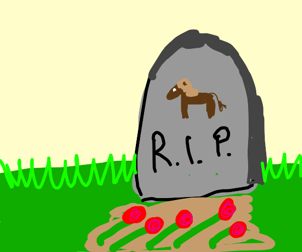 A horse died