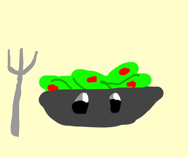 Silly Salad