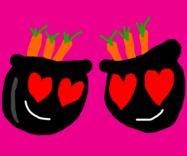 Two cauldrons of carrots in love