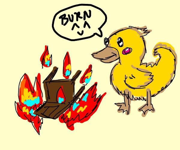 Duck burning a chair