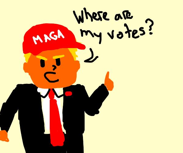 2020 USA Election