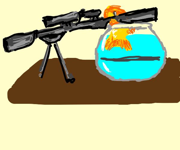 The Veteran Goldfish Sniper