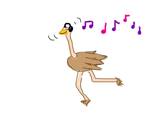 vibing ostrich