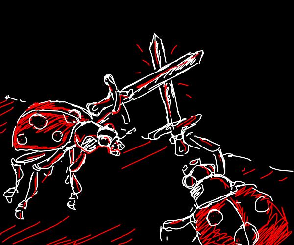 Ladybirds having a swordfight