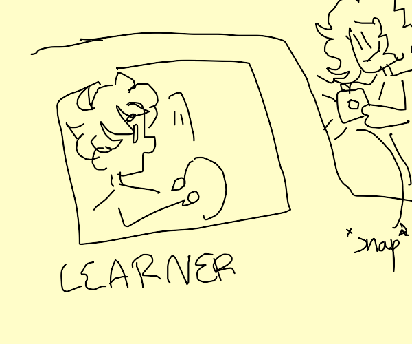 Someone takes a picture of a learning driver