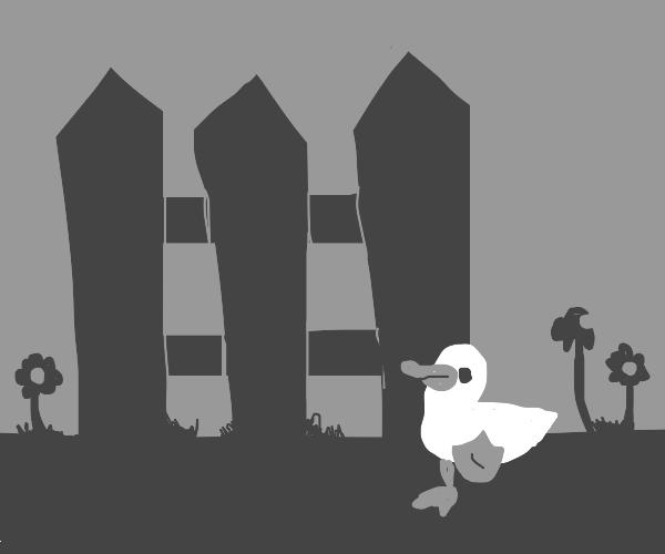 Duckling in the Grayscale Garden