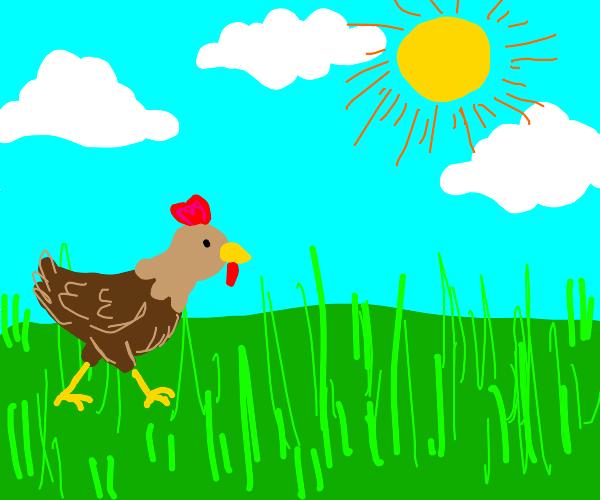 Brown Chicken Walking Through Grass