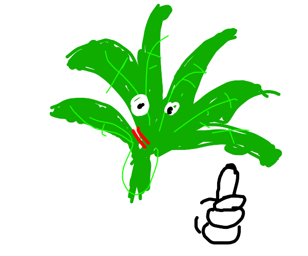 marijuana leaf gives you thumbs up; blushing