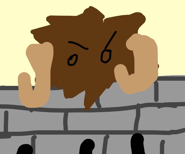 Attack on Bison