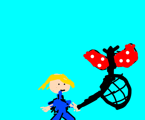 Kid with a butterfly net