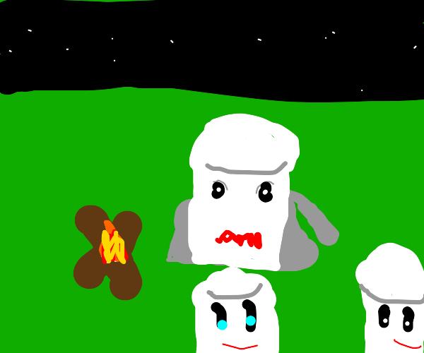 family of marshmallows on its natural habitat