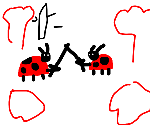 Ladybug War