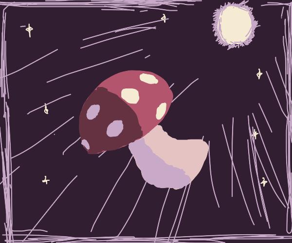 Shroom in Space