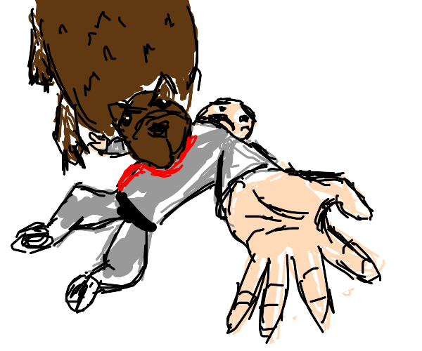 Bear killing Pitbull (the rapper)