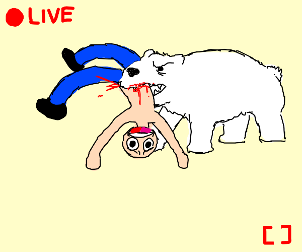 Polar Bear eating Livestreamer