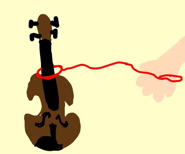 Pet Violin