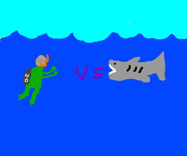 Scuba divers vs shark