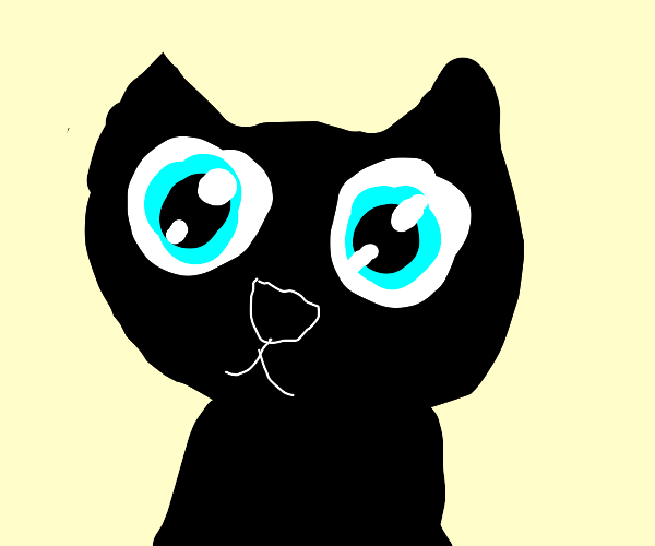 cat with anime eyes