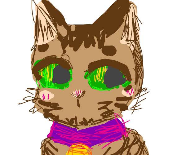 cute brown tabby cat with green eyes