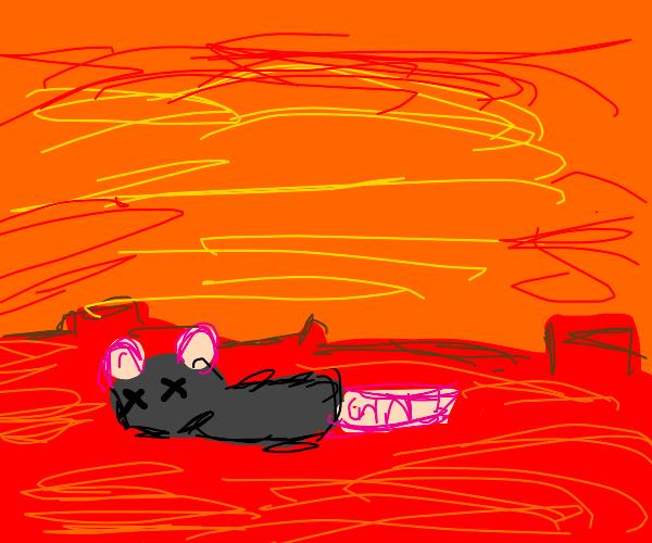 Rat dies on mars