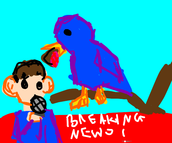 breaking news: the bird has the meat