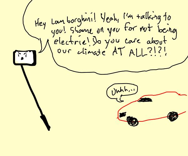 Selfie stick yells at a car