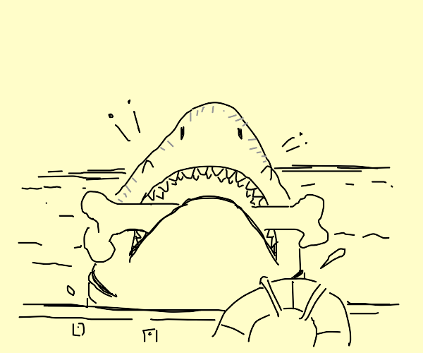 Bought your shark a toy! So much joy!