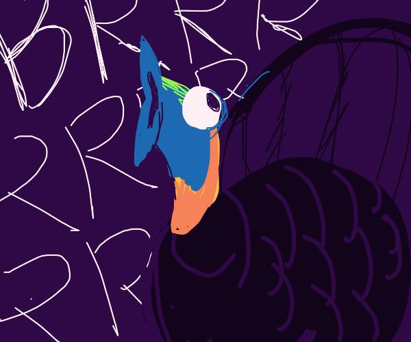 Sad turkey noises