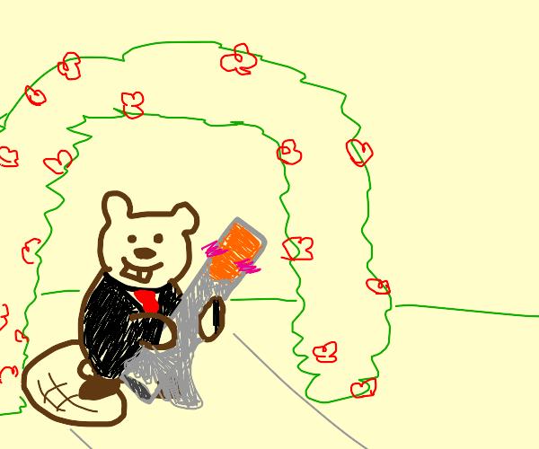 Beaver marrying Cigarette