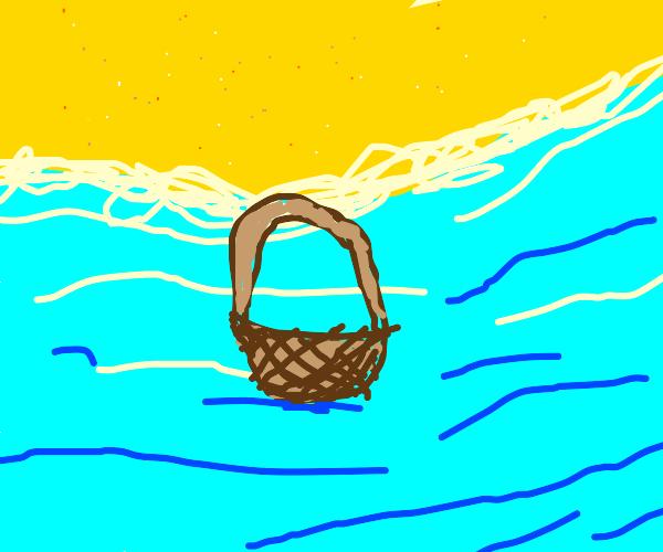 Basket in the ocean