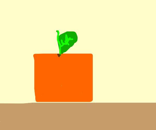a very un-round orange