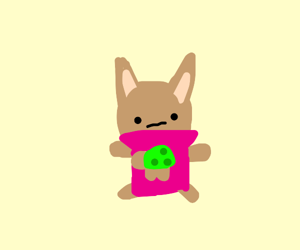 Perplexed Cat in a Turtle Sweater