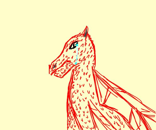 Sad Dragon
