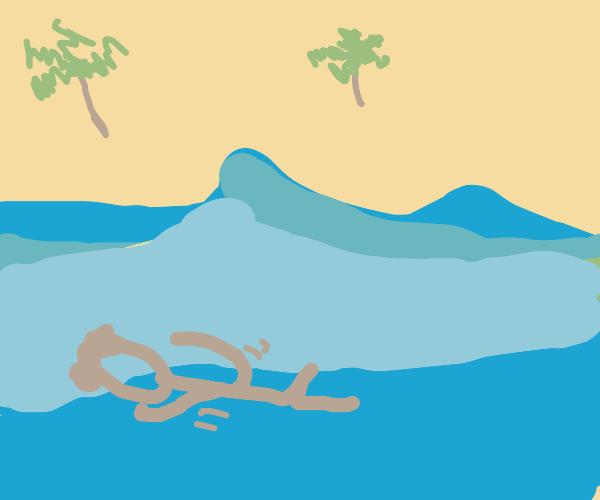 Boy swimming in ocean
