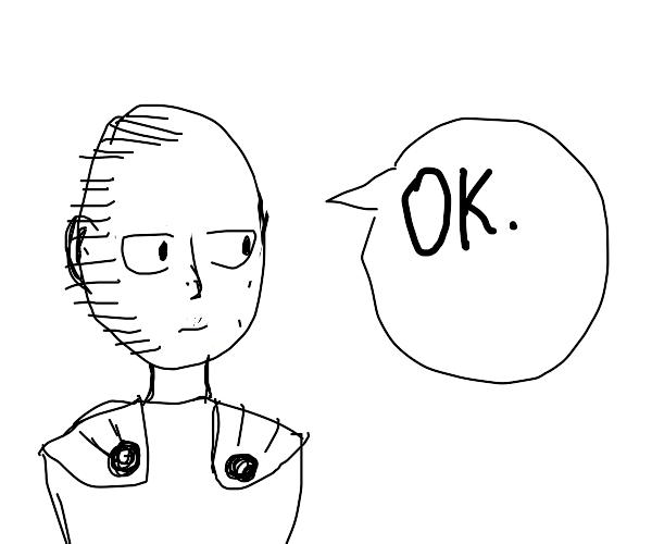 Saitama OK panel