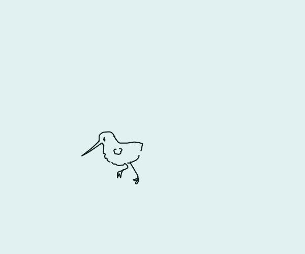 Bird Crawling