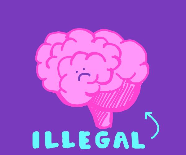 Illegal Brian