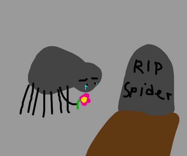 Spider mourns his friend