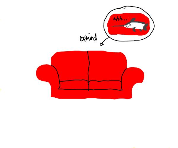 Swordfish hiding with a Sofa