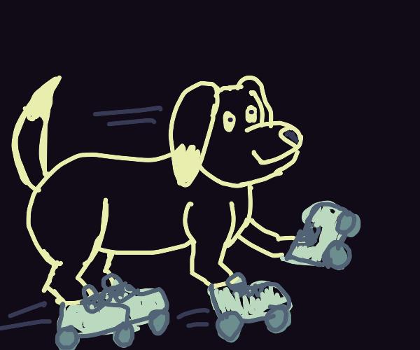 Dog Rollerblading