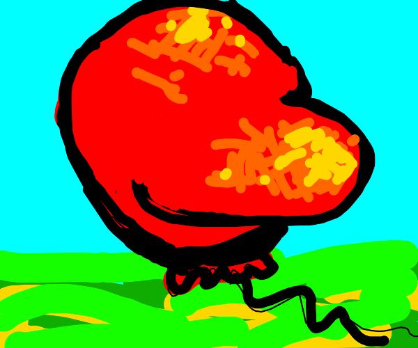 Bloated Balloon