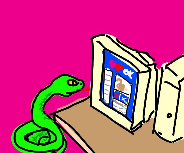 Snake making dating profile