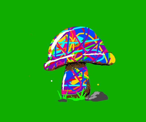 2090 hallucinogenic mushroom on green grass