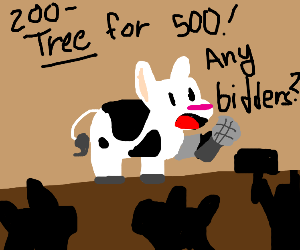 cows are traiding for a tree at the auction