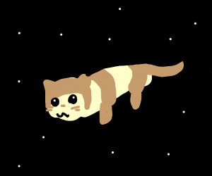 furret in space
