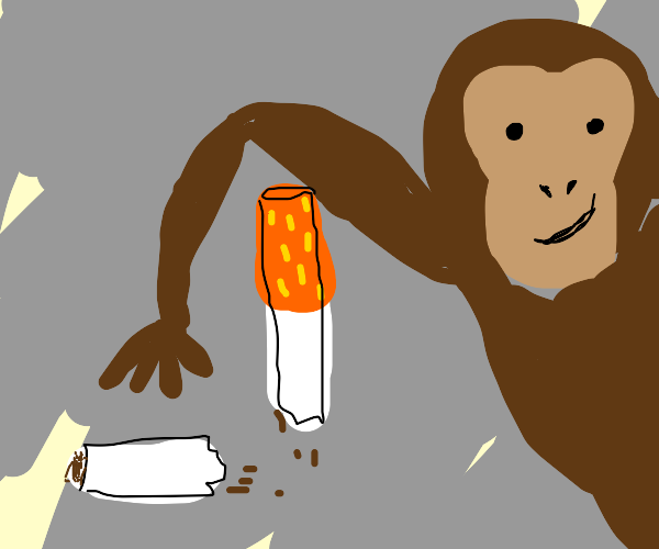 Cigarette snapped by monkey
