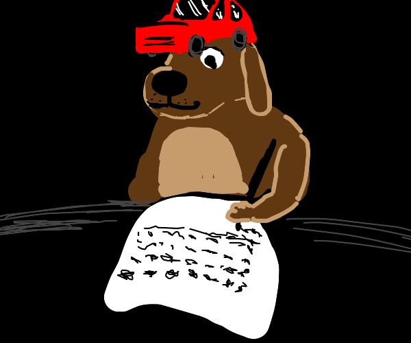 dog with car hat writes essay